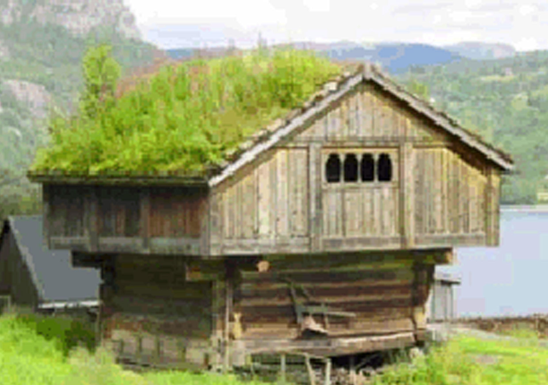 La toiture v g tale ecologis - La toiture vegetalisee ...