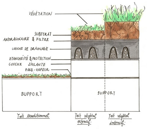 les toits v g taux ecologis. Black Bedroom Furniture Sets. Home Design Ideas